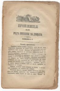 Pcheliza-koriza09